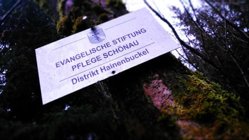 Alle katholisch hier. Nur der Wald ist evangelisch.