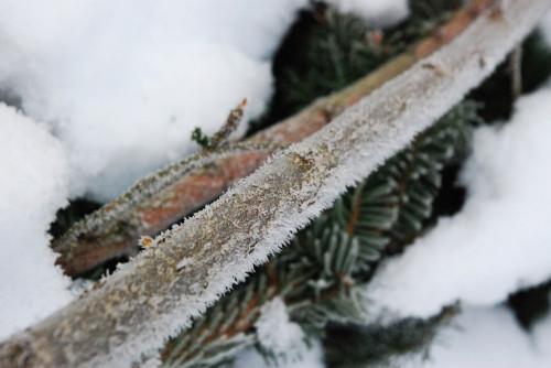 kälte2