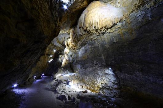 Danke, daß ich in der Höhle fotograferen durfte. Ist sonst nämlich nicht erlaubt.