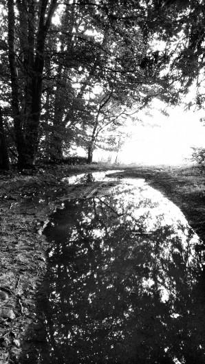Wasser, marsch.