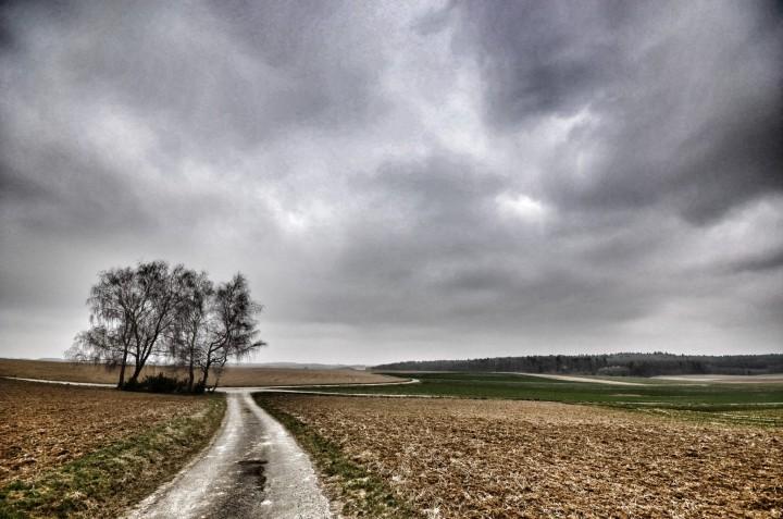 Buchen Odenwald