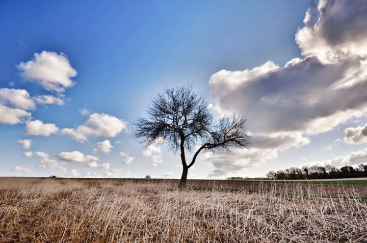 odenwald himmel1