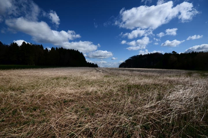 odenwald himmel5