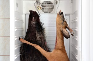 Kühlkammer