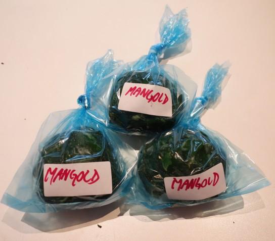 Mangold 6